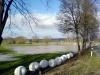 diemelhochwasser-2008-3