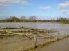 diemelhochwasser-2008-4