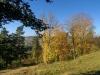 Ossendorfer Herbstimpressionen 10.2017- (115)