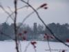 2010-01-02-winter-am-heinberg-2